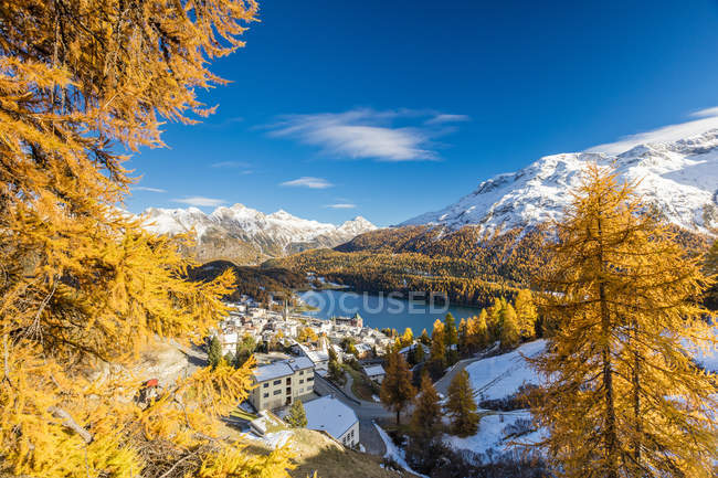St. Moritz framed by colorful woods — Stock Photo