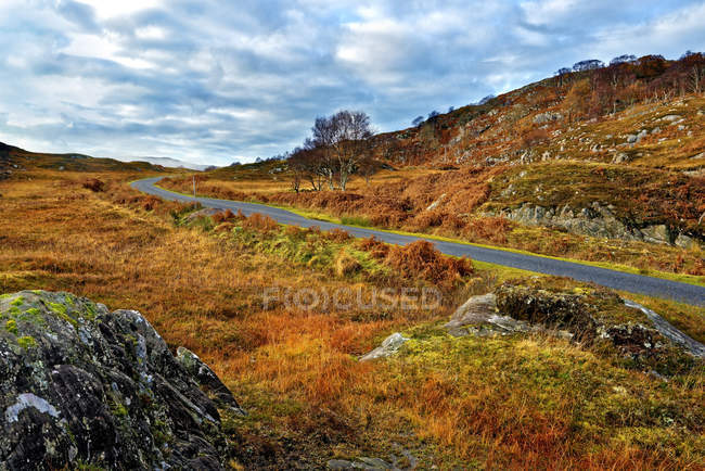 Winding road through the colorful moors — Stock Photo