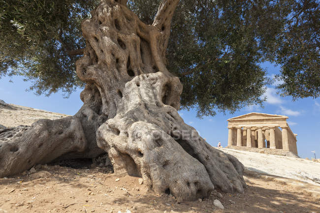 Temple of Concordia, Sicily, Italy — Stock Photo