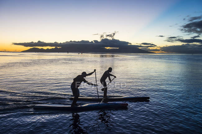 Paddlers working out at sunset — Stock Photo