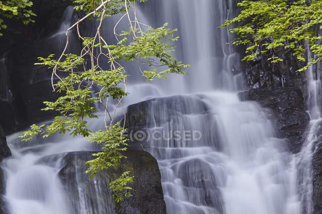 Шейная гривна водопад, Национальный парк Килларни — стоковое фото