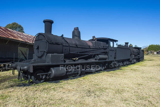 Old steam trains — Stock Photo