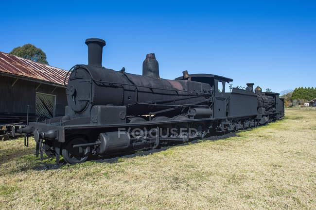 Vecchi treni a vapore — Foto stock