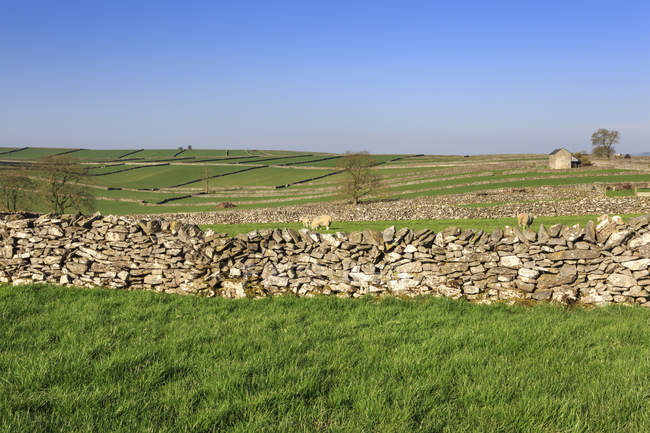 Trockenmauern und Hügel — Stockfoto