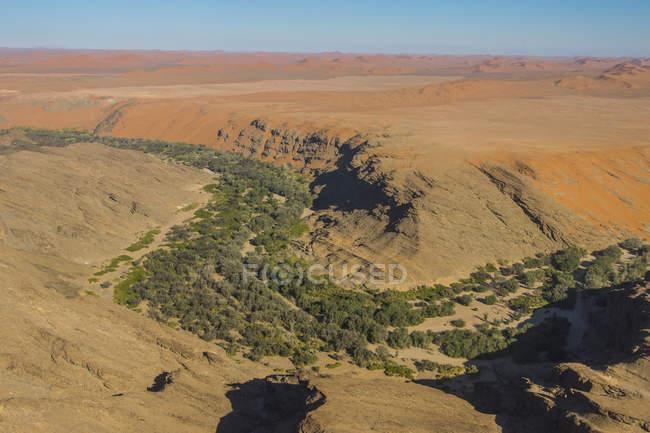 Green canyon on edge of Namib desert — Stock Photo