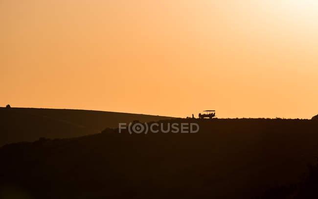 Südafrikanischen Wildreservat — Stockfoto