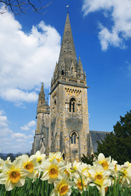 Llandaff Cathedral, Cardiff, Wales — Stock Photo