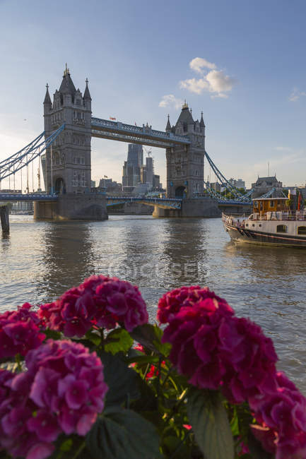 Tower Bridge and City of London — Stock Photo