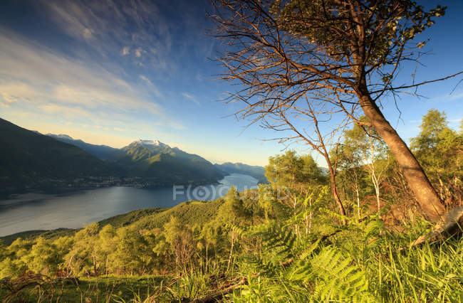 Lake Como surrounded by green meadows — Stock Photo