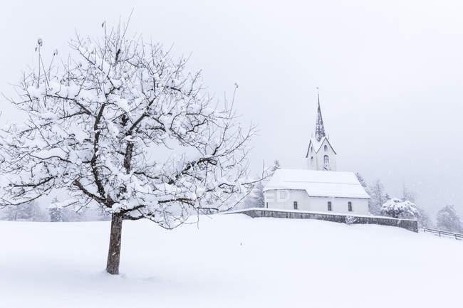 Church of Versam snow-laden trees — Stock Photo