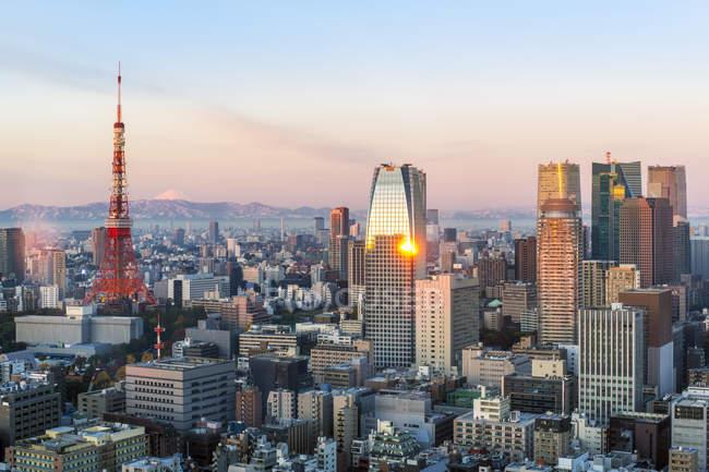 Toits de la ville et l'emblématique tour de Tokyo — Photo de stock