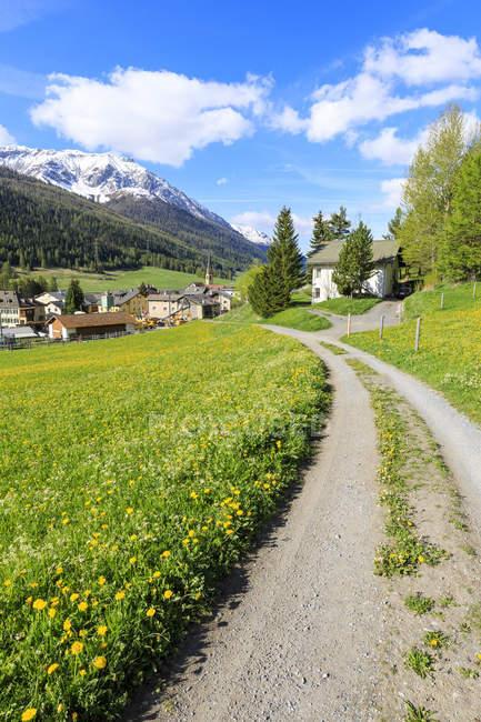 Альпийская деревня, окруженный зелеными лугами — стоковое фото