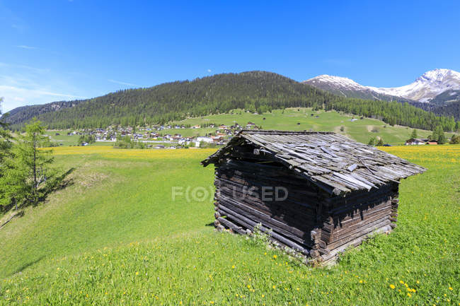 Alpine hut in green meadows — Stock Photo