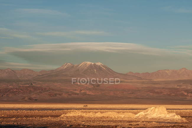 Randonneurs sur sel plat avec enneigées pic volcanique en arrière-plan, le Chili, l'Amérique du Sud — Photo de stock