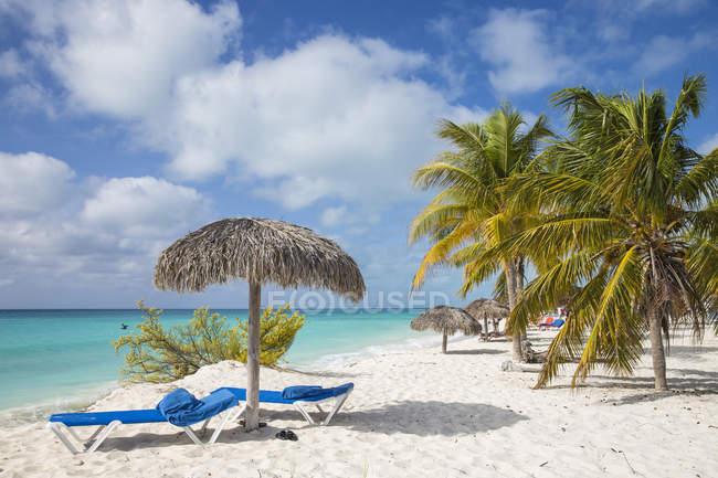 Шезлонги і парасольки в Playa Sirena — стокове фото