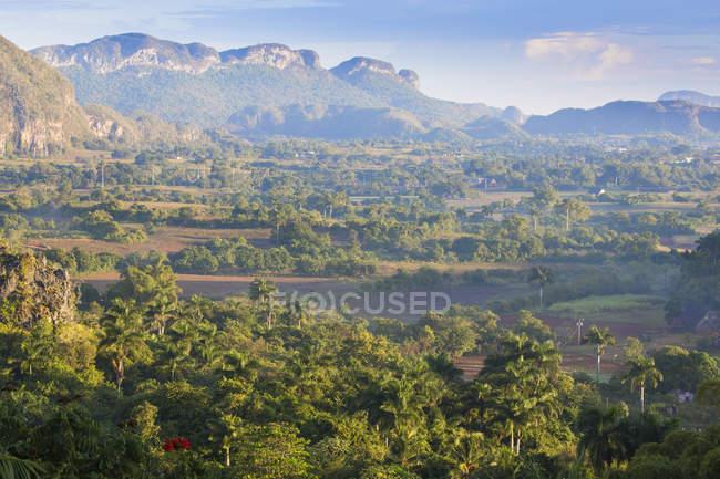Paysage de la vallée de vinales — Photo de stock