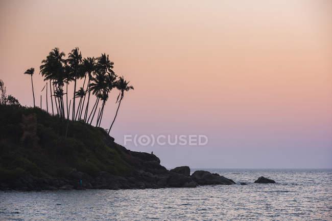 Palmeiras silhuetas Palolem Beach ao pôr do sol, Goa, Índia — Fotografia de Stock