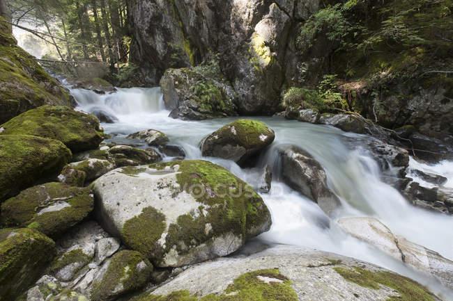 River Sarca with rocks — Stock Photo