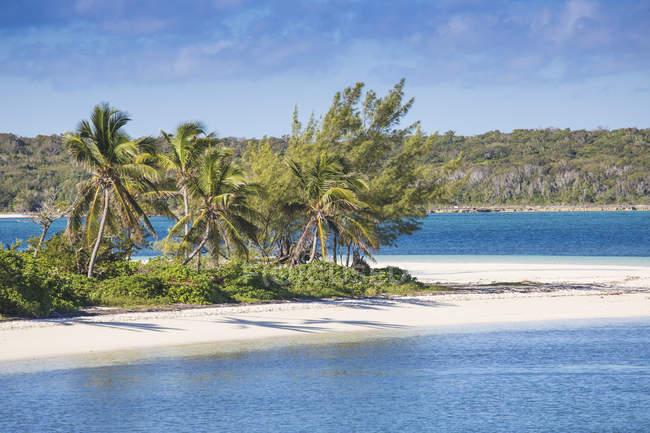 Spiaggia di Tahiti con palme — Foto stock