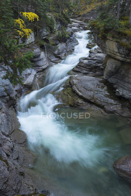 Fluss fließt durch Maligne Canyon — Stockfoto