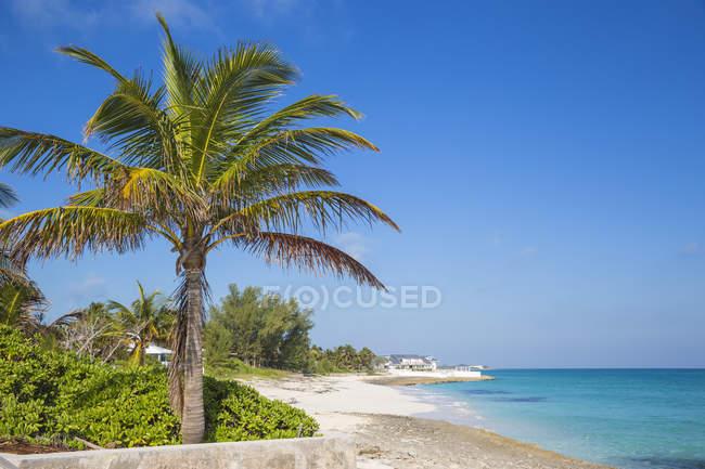 Praia da ilha do homem-O-War Cay — Fotografia de Stock