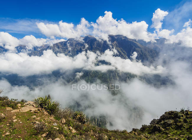 Colca Canyon in Wolken — Stockfoto