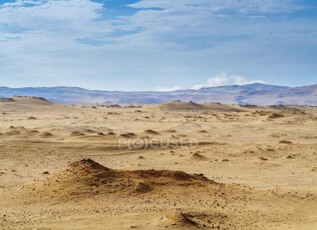Sabbie a riserva nazionale di Paracas — Foto stock