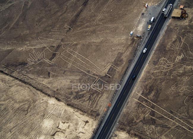 Таємничий ящірка Geoglyph — стокове фото