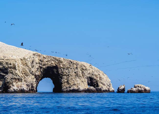Бальестаса острова вблизи Paracas — стоковое фото