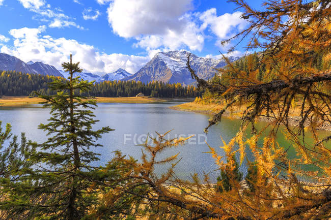 Palu Lake in autumn — Stock Photo