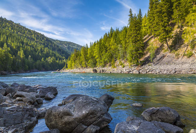 Clearwater River and woods — Stock Photo