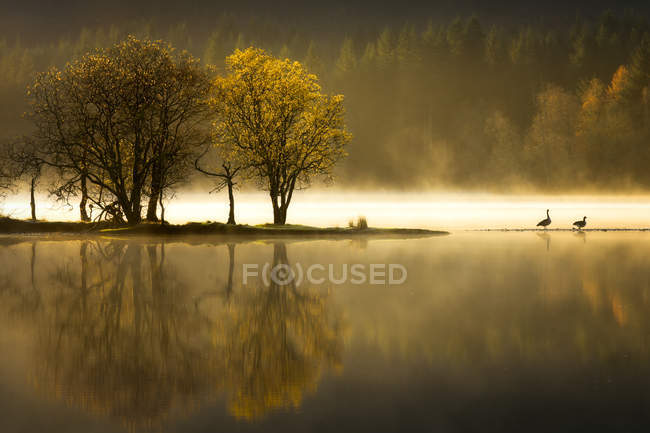 Trossachs National Park in autumn — Stock Photo