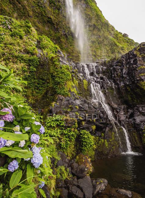 Poco do Bacalhau Waterfall - foto de stock