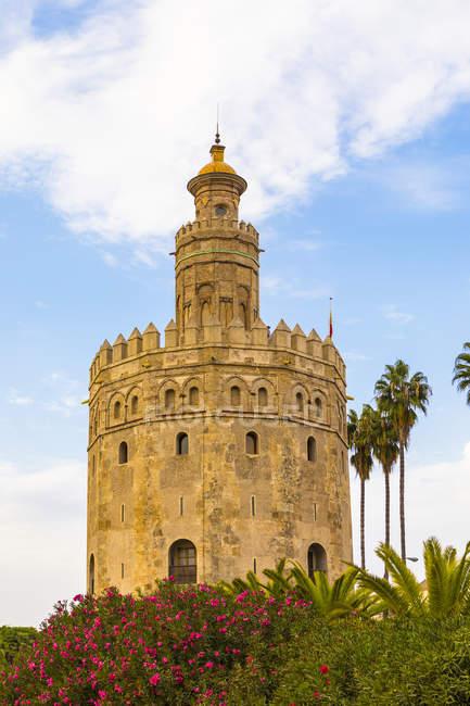 Torre del Oro exterior — стокове фото