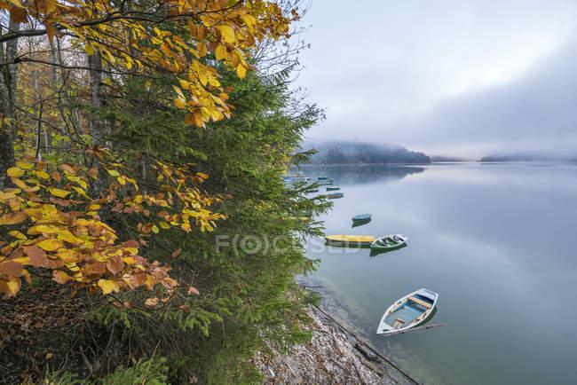 Лодки на озере Sylvenstein в осени — стоковое фото