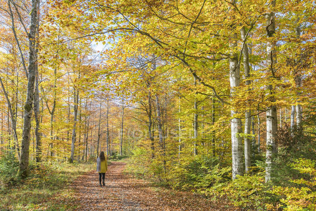 Woman walking in forest — Stock Photo