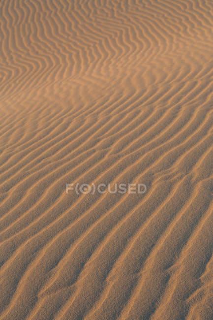 Sand texture on dune — Stock Photo