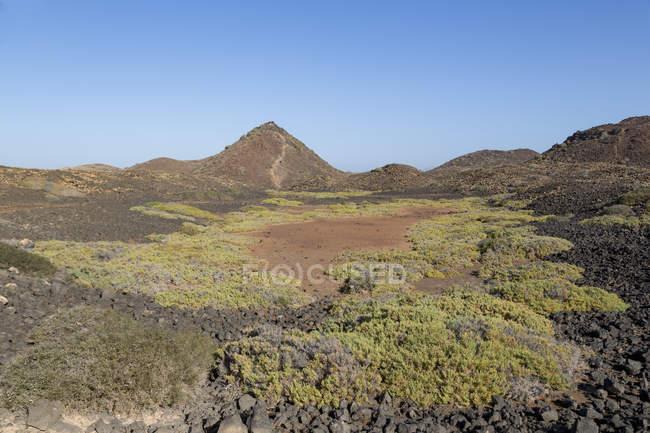 Вулканічна узбережжі Фуертевентура — стокове фото