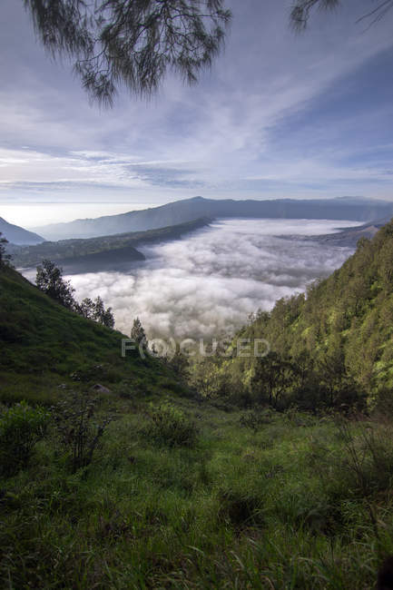 Mount Bromo in morning clouds, East Java, Indonesia, Southeast Asia, Asia — Stock Photo