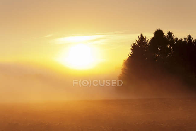 Early morning fog at sunrise in autumn — Stock Photo