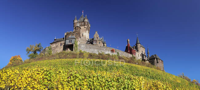 Reichsburg Castle and vineyards in autumn, Cochem, Moselle Valley, Rhineland-Palatinate, Germany — Stock Photo