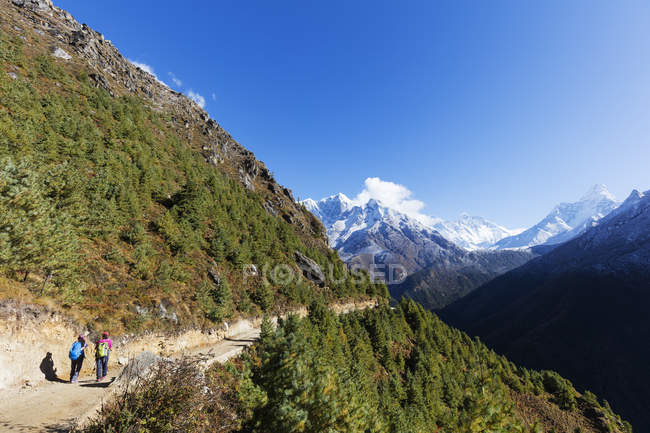 Touristes randonnée dans les montagnes, Sagarmatha National Park, Khumbu Valley, Népal, Himalaya, Asie — Photo de stock