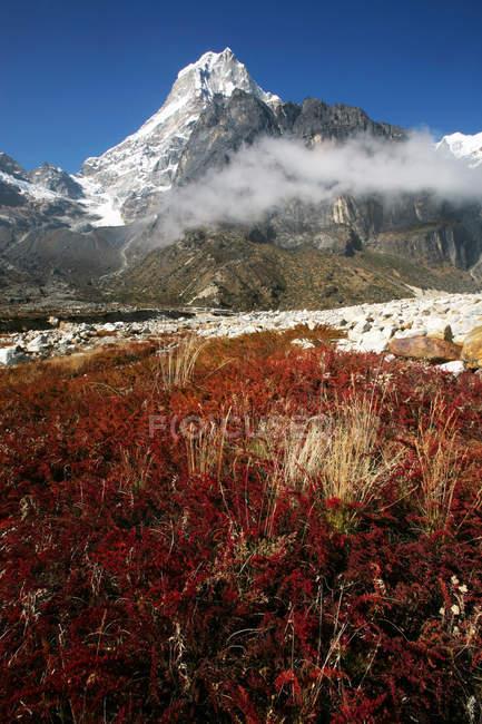 Sommet de montagne de Tangnag avec nuage et rouge végétation, Khumbu, Népal, Himalaya, Asie — Photo de stock