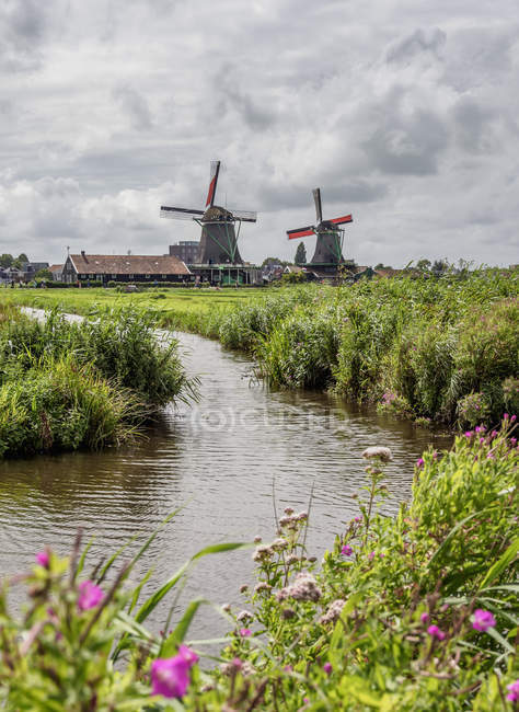 Canal and traditional Windmills in Zaanse Schans, Zaandam, North Holland, The Netherlands — Stock Photo