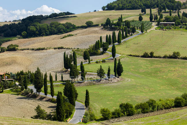 Winding Tuscan road surrounded by fields and Cypress trees, near La Foce, Tuscany, Italy — Stock Photo
