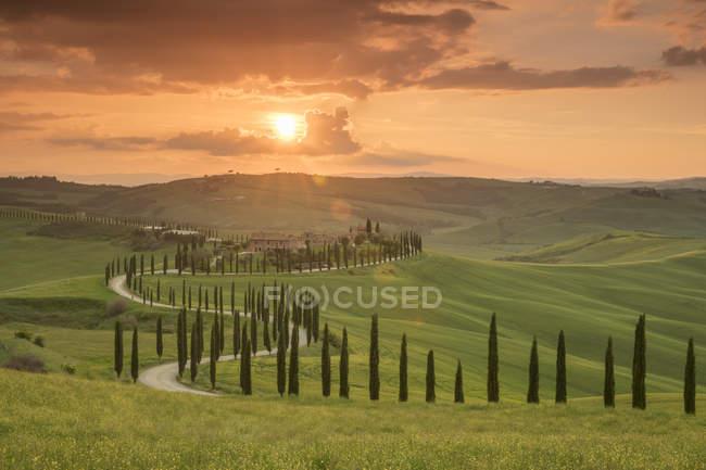 Захід сонця над Agriturismo Baccoleno і звивистий шлях з кипарисових дерев, Ашано в Тоскані, Італія, Європа — стокове фото