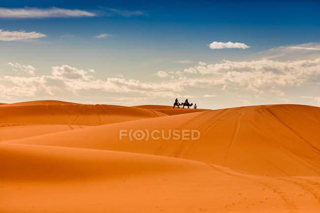 Dunas de areias no deserto de Merzouga com camelos em fundo, Marrocos, norte da África, África — Fotografia de Stock