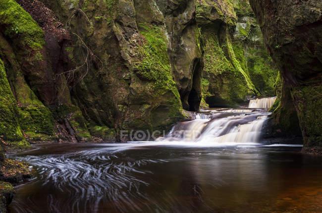 Ущелье в Глен Finnich вблизи Killearn, Стирлингшайр, Шотландия, Соединенное Королевство, Европа — стоковое фото