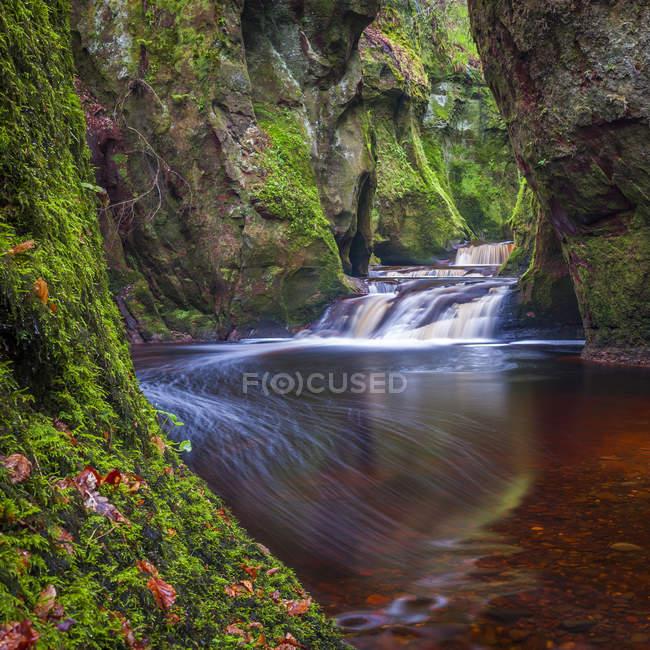 Schlucht am Finnich Glen nahe Killearn, Stirlingshire, Schottland, Vereinigtes Königreich, Europa — Stockfoto