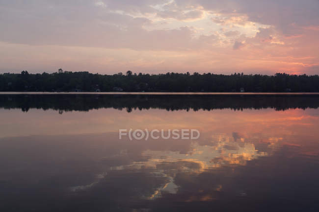 Forest on shore of Gull Lake at sunset, Ontario, Canada, North America — Stock Photo